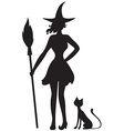 witch cat vector image vector image