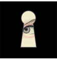 eye and keyhole vector image