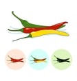 Icons hot chili pepper vector image