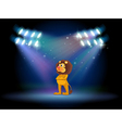 A lion standing in the middle of the stage vector image vector image