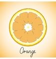 Fresh ripe slice of orange vector image