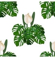 jungle green tropical leaf and monster flowers vector image