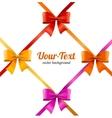 Present Satin Ribbon and Bow Card vector image