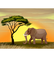 Elephant under a tree vector image vector image