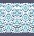 Pale blue snowflakes in hexagons seamless pattern vector image