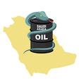 Barrel oil in Saudi Arabia map background Snake vector image