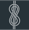 sea boat rope eight knot vector image