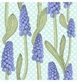 Seamless pattern with grape hyacinth or muskari vector image