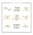 Thanksgiving gold lettering set vector image