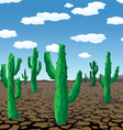 cactuses in desert vector image vector image