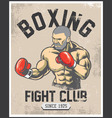 vintage boxing poster vector image