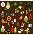 Condiments spices herbs and oil flat icons vector image