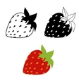 strawberries isolated on white vector image