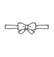 elegant bow vector image