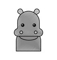 cute hippo cartoon animal wildlife baby vector image