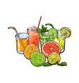 orange grapefruit lime lemon juice and fruit vector image