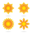 Eco sunflower set vector image