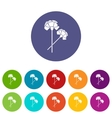 Carnation set icons vector image