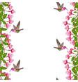 fuchsia and hummingbird seamless border vector image
