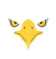 eagle eyes front face graphic vector image