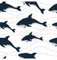 pattern killer sea vector image
