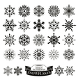 Set of different snowflakes vector image