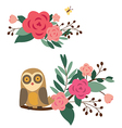 Floral compositions with owl and butterfly vector image vector image