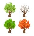 tree at four seasons vector image vector image