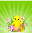 Easter chick background vector image vector image
