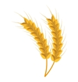 Wheat harverst colorful icon isolated on white vector image