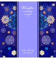 Winter design with golden and blue snowflakes on vector image