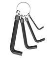 allen keys vector image