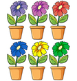 Pots with flowering plants vector image vector image