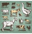 Farm animals vintage set vector image