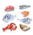 Seafood Products Set vector image