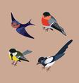forst birds vector image