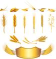 wheat set vector image