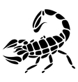 scorpio tattoo vector image vector image