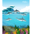 Dolphins swimming under the sea vector image vector image