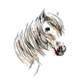 Colored hand drawing horse head vector image