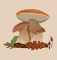 big forest mushrooms vector image