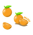 logo icon design orange farm vector image