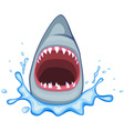 shark mouth vector image