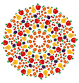 summer fruity mandala coloring book colored vector image