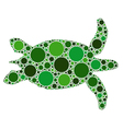 of dotted green turtle vector image