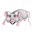 Mouse cartoon of a mouse vector image