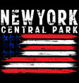 on the theme in new york city freedom stylized vector image