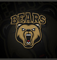 logo grizzly bear logo for a sport team vector image