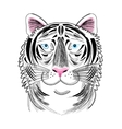 portrait of tiger vector image