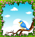 Blue bird on the branch vector image